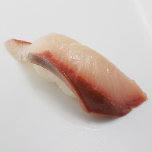 Hamachi(yellowtail)