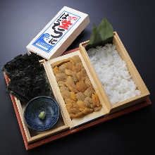 Raw sea urchin