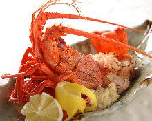 Spiny lobster Teppanyaki