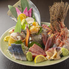 Assorted sashimi of the day