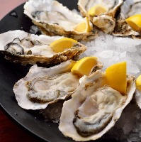 An Oyster Shucking Experience