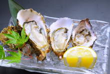Raw oyster