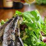 Oiled sardine