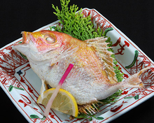 Salted and grilled snapper