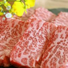 Assorted organ meats