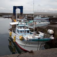 Misaki Port(Ehime prefecture)