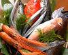 日替わり鮮魚の刺身