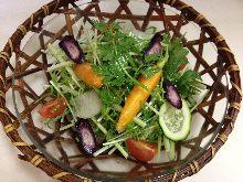 京野菜のサラダ