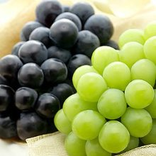 오늘의 과일