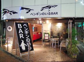 도쿄에 있는 유일한 펭귄 바를 경험해보세요