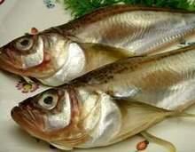 생선 숯불 구이