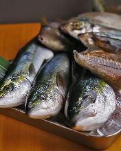 오늘의 생선 요리