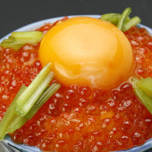 연어알 덮밥