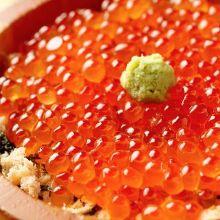 鲑鱼卵和鲑鱼亲子盖饭