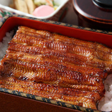 8,500日元套餐 (6道菜)