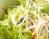 萝卜水菜沙拉