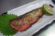 其他 烤鱼