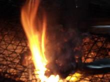 炭火烤土鸡