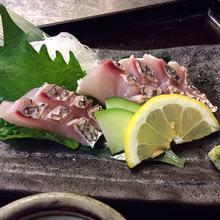 其他 生鱼片、鲜鱼