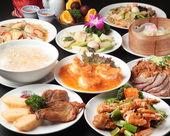 7,250日元套餐 (8道菜)