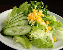 绿色蔬菜沙拉