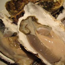 生牡蛎或烤牡蛎