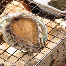 鲍鱼(刺身或炙烤)