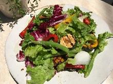 培根與溫泉蛋沙拉