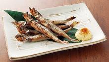 帶卵柳葉魚