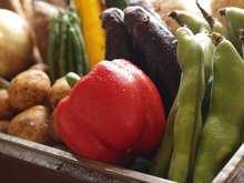 蔬菜天婦羅