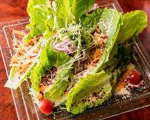 長葉生菜凱撒沙拉