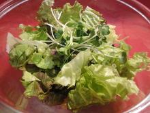 綠色鮮蔬沙拉