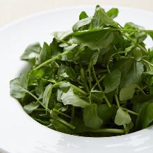 西洋菜沙拉