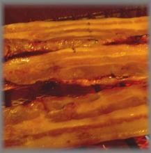 其他 火腿、香腸、燻烤製品