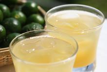 扁實檸檬碳酸酒