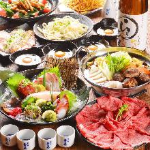 4,990日圓套餐