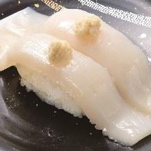 太平洋褶柔魚