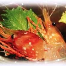 生吃活牡丹蝦