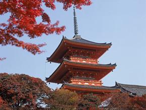 京都的飲食文化