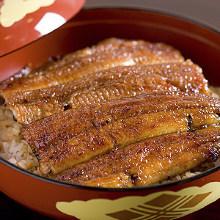 特級上等鰻魚盒飯