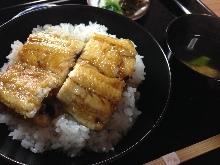 中鰻魚蓋飯